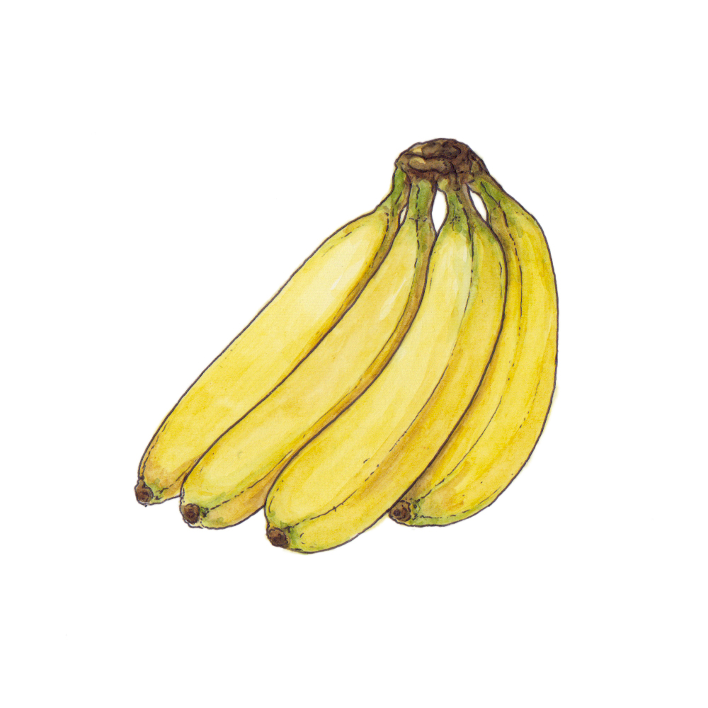 illustration_panorama_editorial_habit_ilariazena_banana