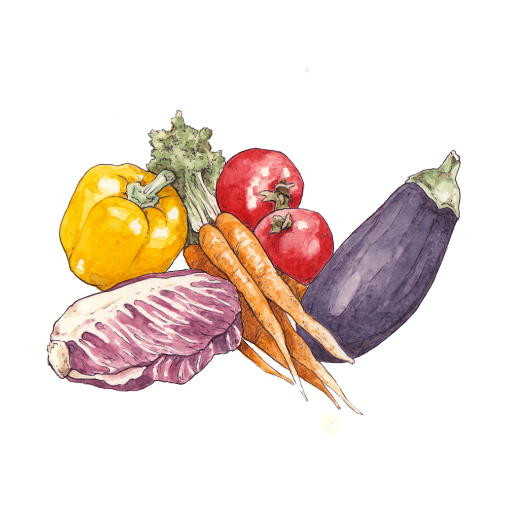 illustration_panorama_editorial_habit_ilariazena_vegetables